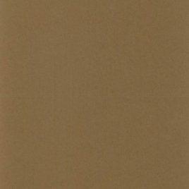 מארז 12 בסיסי נייר לכרטיסי ברכה , גוון חום ג'ורג'יה, 200 גרם 5.5X8.5 אינץ