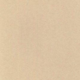 מארז 12 יחידות נייר קרפט חלק  גוון חום בהיר 300 גרם 5.5X8.5 אינץ עם ביג- קו שקע לקיפול אמצע