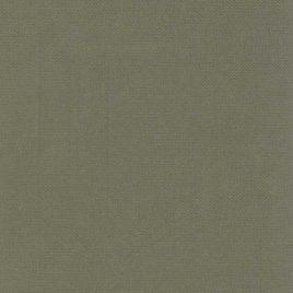 """נייר אפלין ירוק זית- 125 גרם גודל 50X70 ס""""מ"""