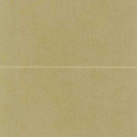 NEENAH STAR DREAM גוון עלה זהב גודל 5.5X8.5 אינץ עם ביג- קו שקע לקיפול