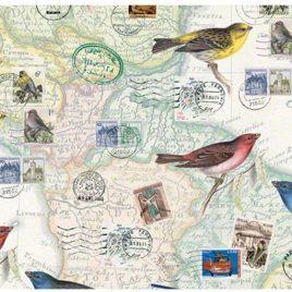 מסעות ציפורים