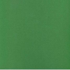 נייר ירוק כהה 250 גרם