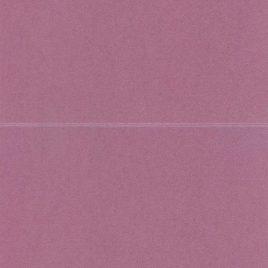 NEENAH STAR DREAM גוון פאנצ'י 5.5X8.5 אינץ עם ביג- קו שקע לקיפול